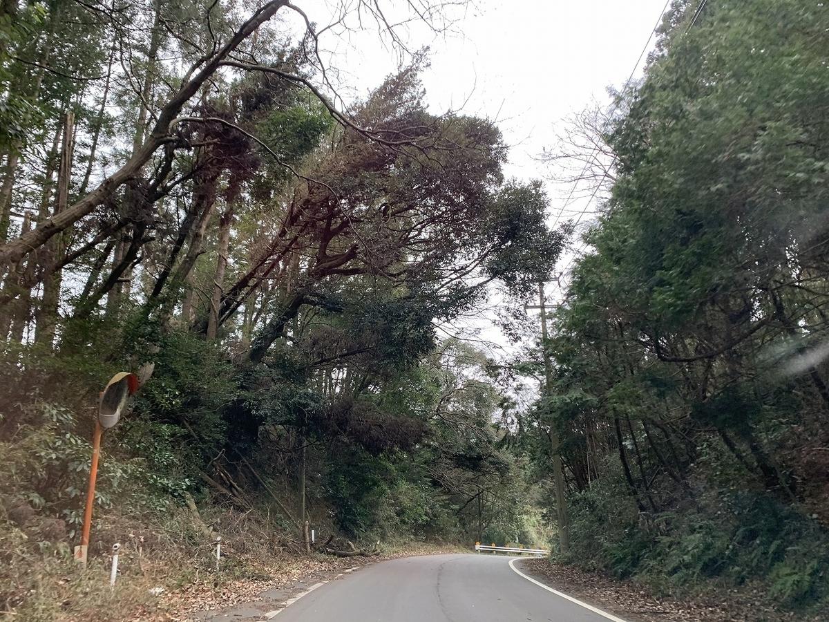 f:id:shimizu-satoyama:20210215192839j:plain