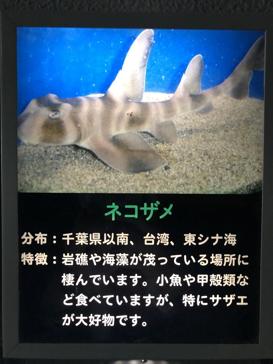 f:id:shimizu_blog:20190509230825j:plain