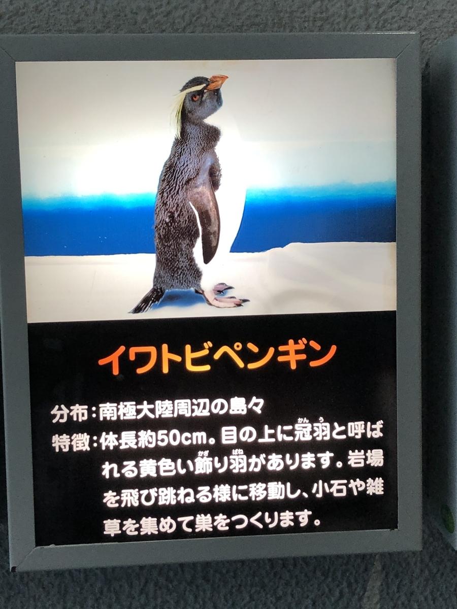 f:id:shimizu_blog:20190513010344j:plain