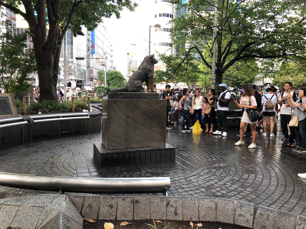 f:id:shimizu_blog:20190813184429j:image