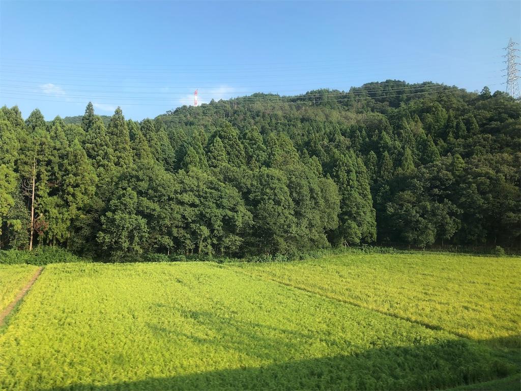 f:id:shimizu_blog:20190817170337j:image