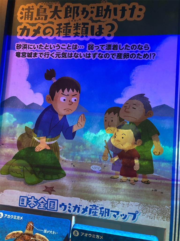 f:id:shimizu_blog:20190821214439j:image