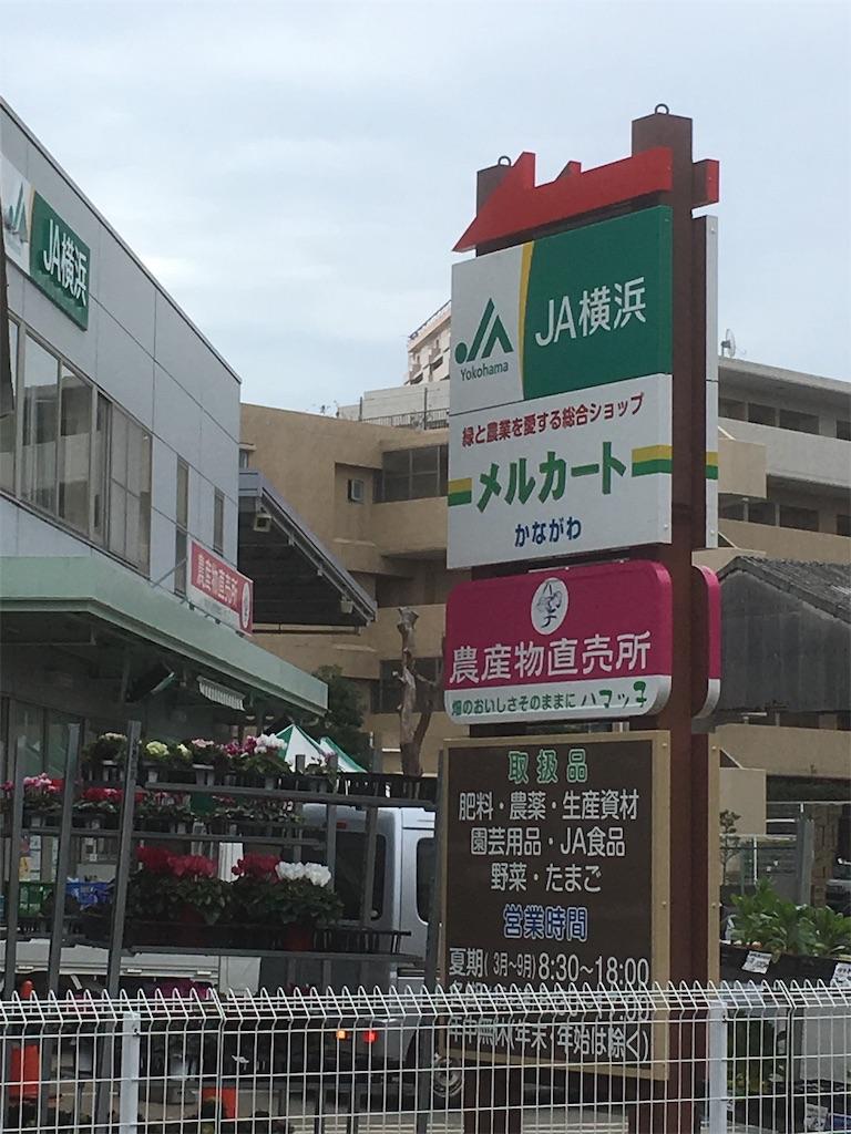 f:id:shimizufarm:20181203100222j:image