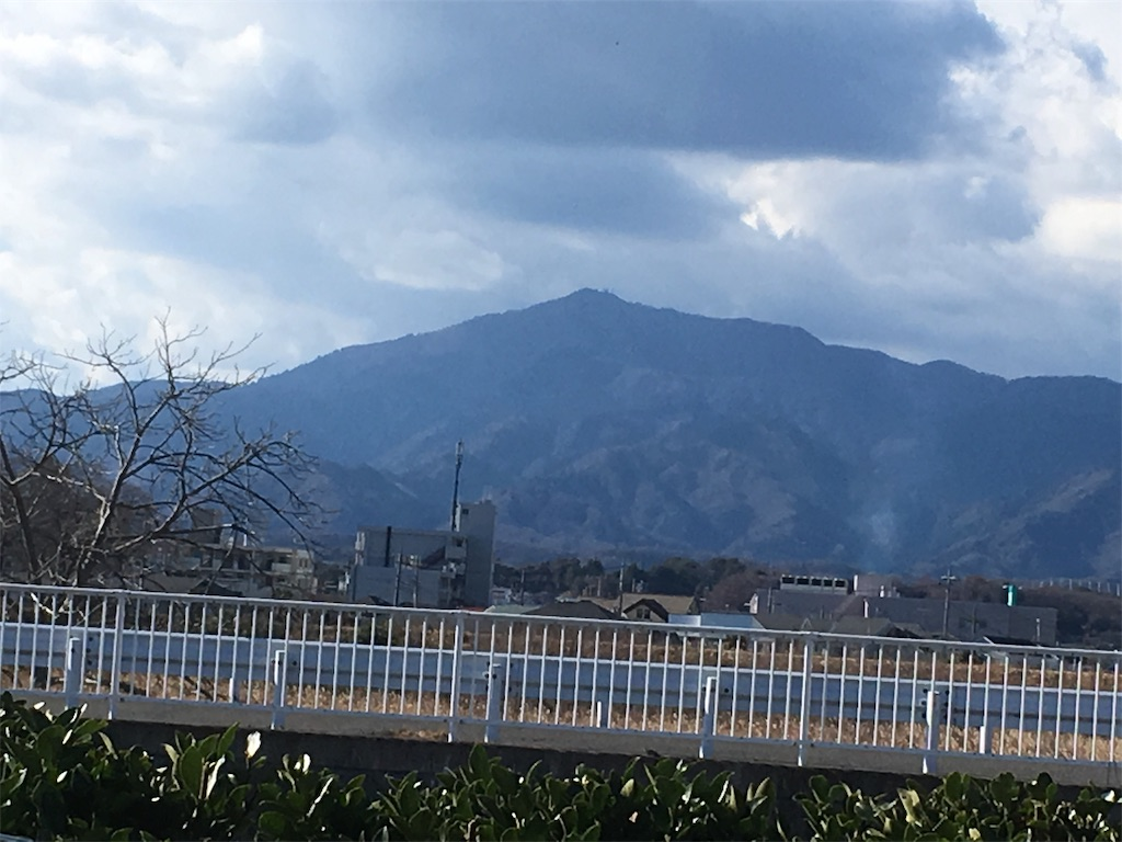 f:id:shimizufarm:20190102140027j:image