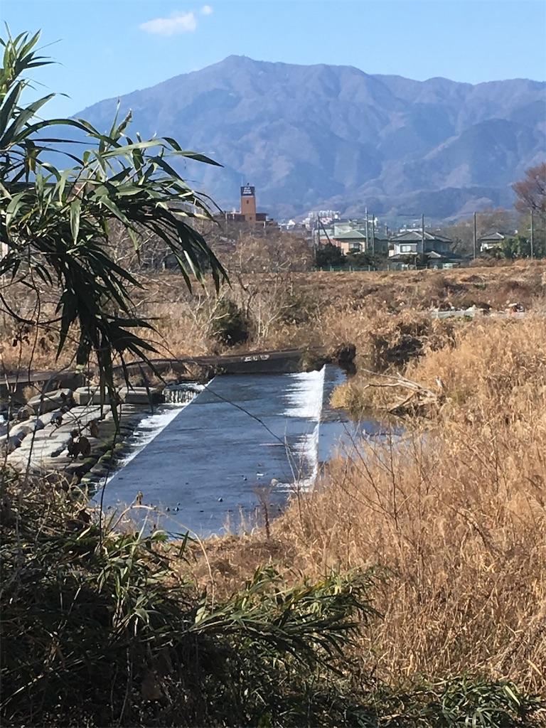 f:id:shimizufarm:20190105104705j:image