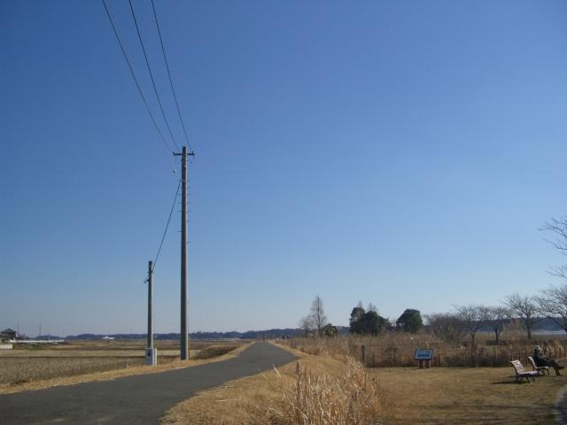 f:id:shimizumasashi:20060304015003j:image