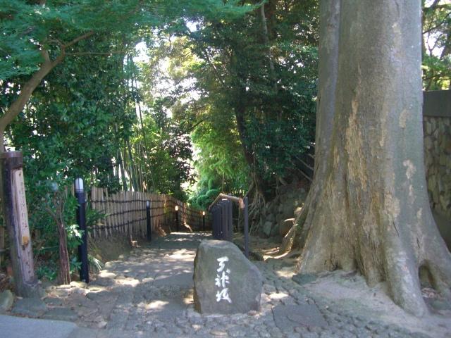 f:id:shimizumasashi:20100811130501j:image