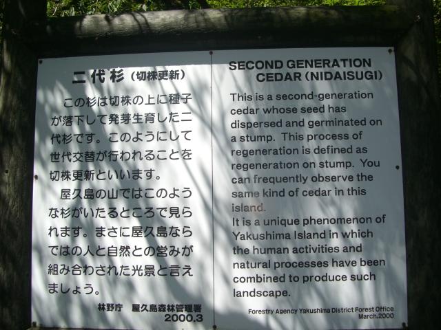 f:id:shimizumasashi:20100902113150j:image