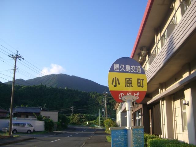 f:id:shimizumasashi:20100903065426j:image