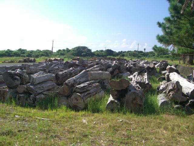 f:id:shimizumasashi:20100903091130j:image