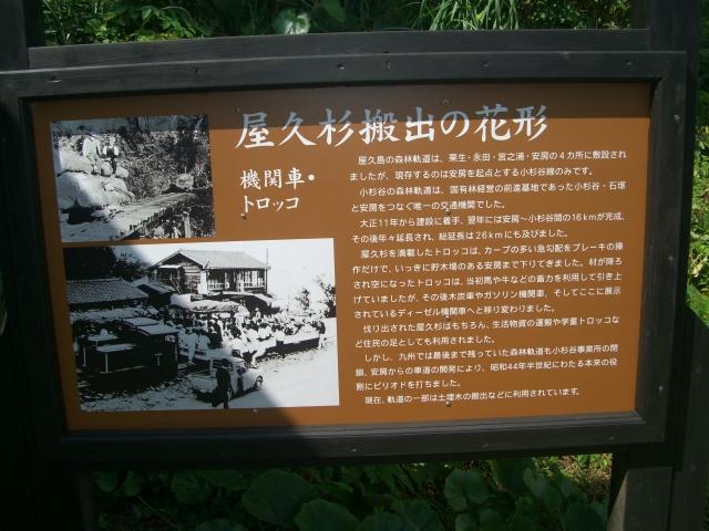 f:id:shimizumasashi:20100903095408j:image