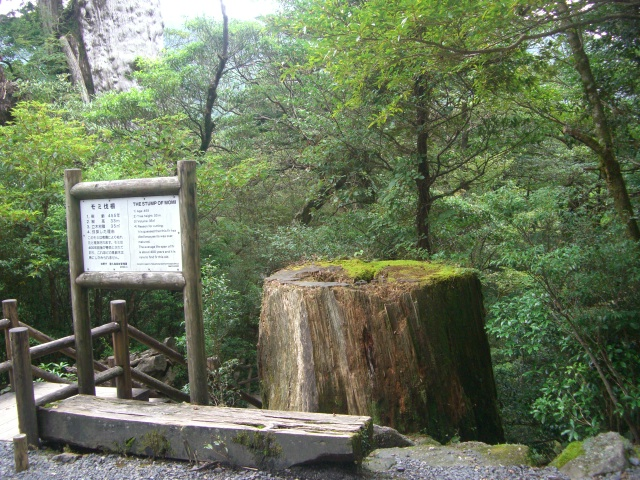 f:id:shimizumasashi:20100903105501j:image
