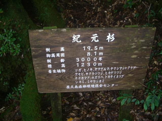 f:id:shimizumasashi:20100903110055j:image