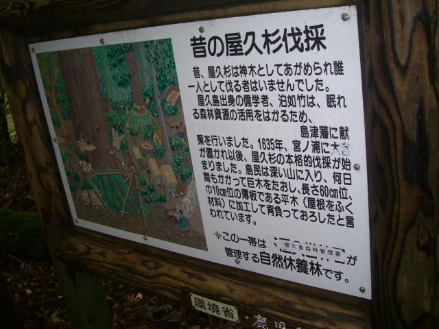 f:id:shimizumasashi:20100903114112j:image