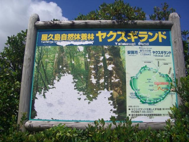 f:id:shimizumasashi:20100903131837j:image