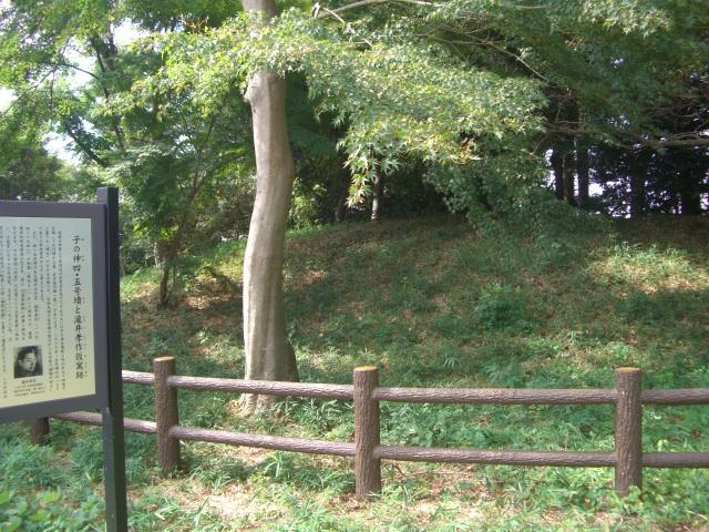 f:id:shimizumasashi:20100912092719j:image