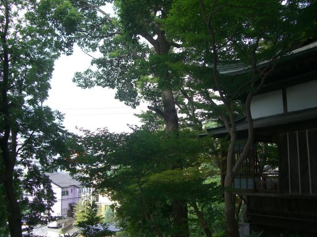f:id:shimizumasashi:20100912093441j:image