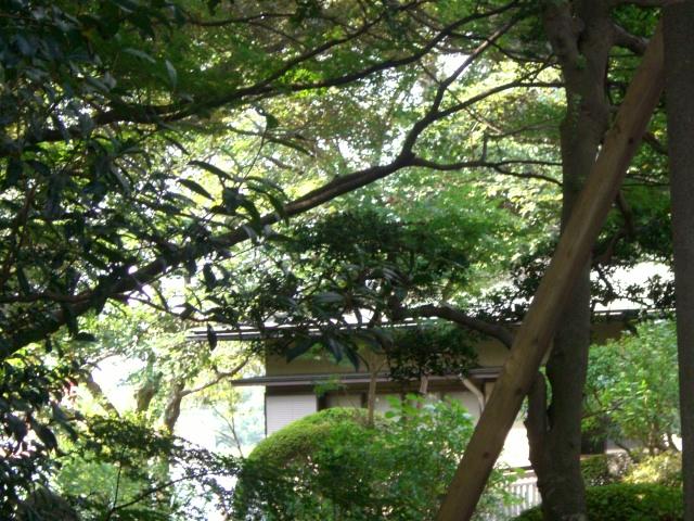 f:id:shimizumasashi:20100912101401j:image