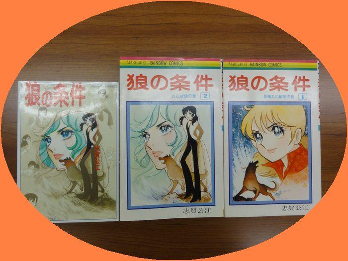 f:id:shimizumasashi:20101110120647j:image
