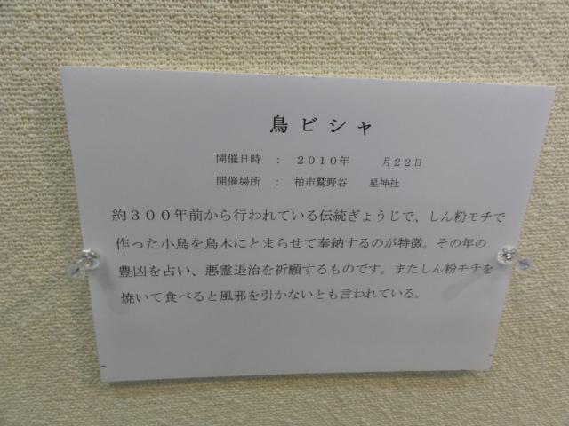 f:id:shimizumasashi:20110219121607j:image