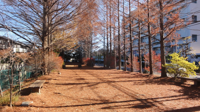f:id:shimizumasashi:20111217115558j:image