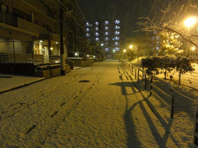 f:id:shimizumasashi:20120123221351j:image