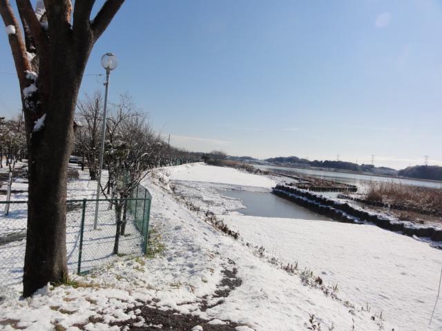 f:id:shimizumasashi:20120124113021j:image