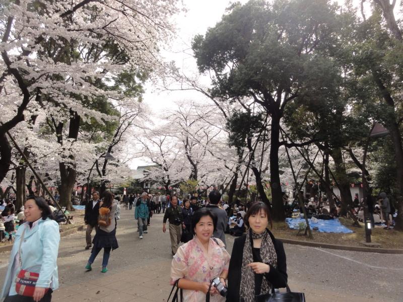 f:id:shimizumasashi:20120410143821j:image