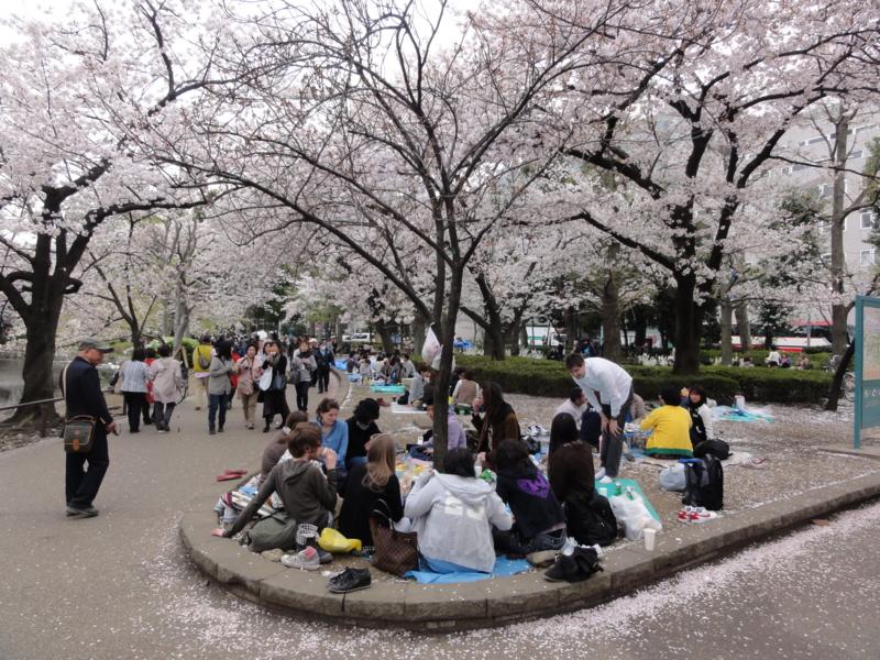 f:id:shimizumasashi:20120410155332j:image