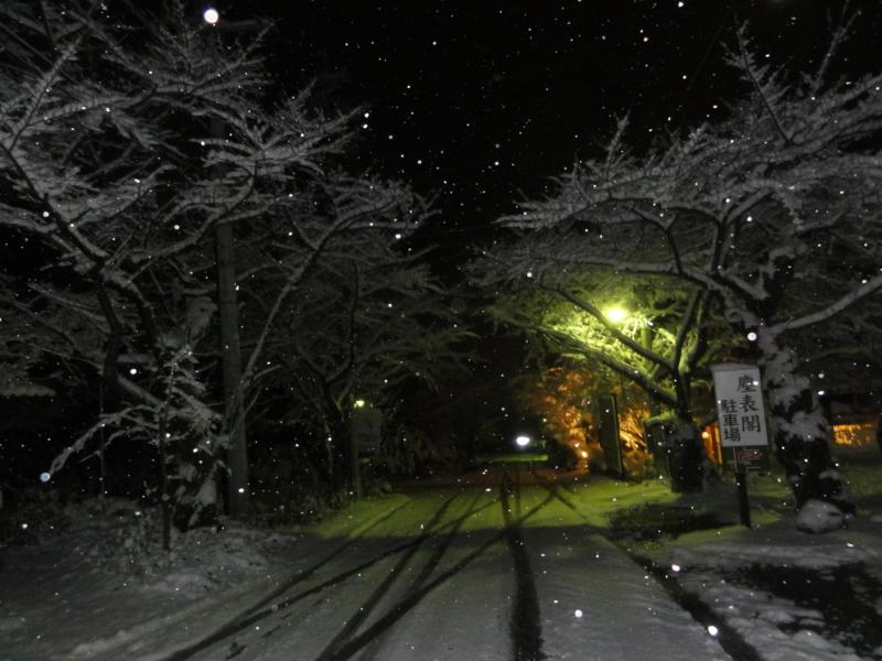 f:id:shimizumasashi:20121201202540j:image