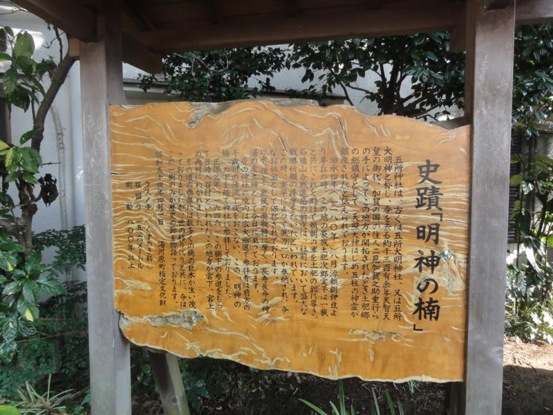 f:id:shimizumasashi:20130203142635j:image
