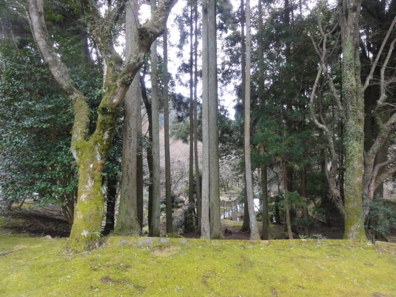 f:id:shimizumasashi:20130203155223j:image