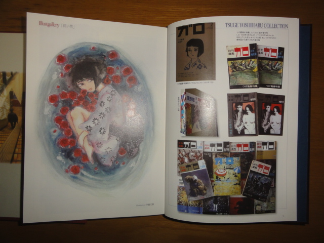 f:id:shimizumasashi:20131020100204j:image