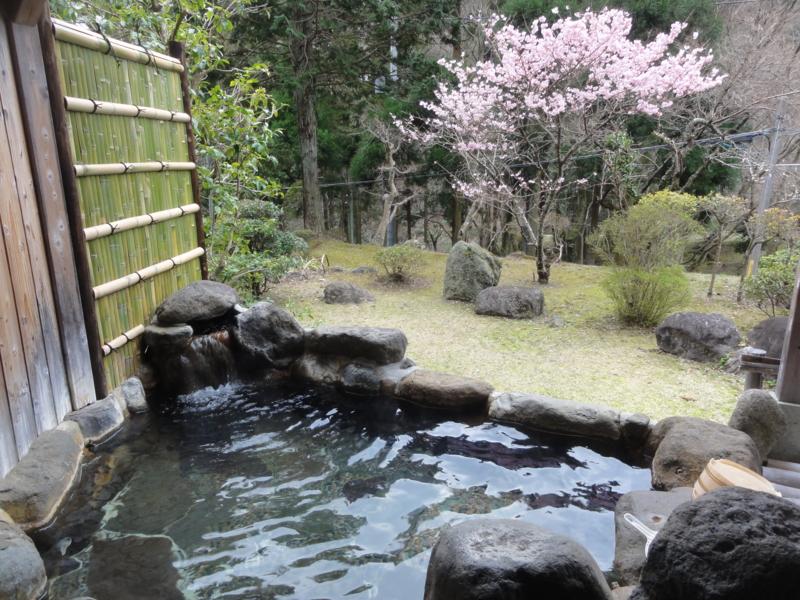 f:id:shimizumasashi:20140319160410j:image