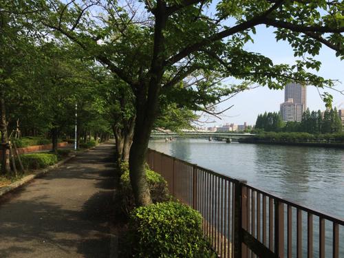 f:id:shimizunomukai:20160522181410j:plain