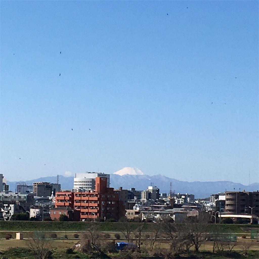 f:id:shimizunomukai:20170131125847j:image