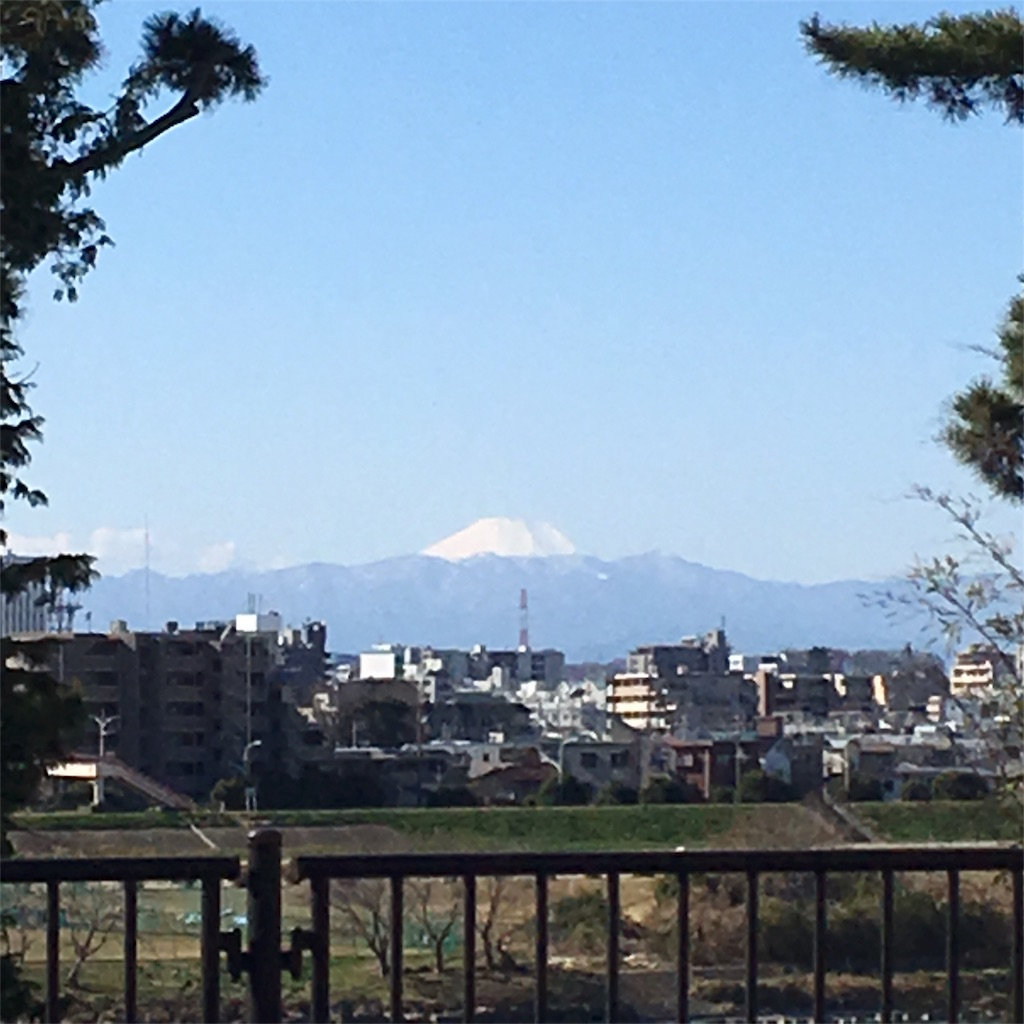 f:id:shimizunomukai:20170131125852j:image