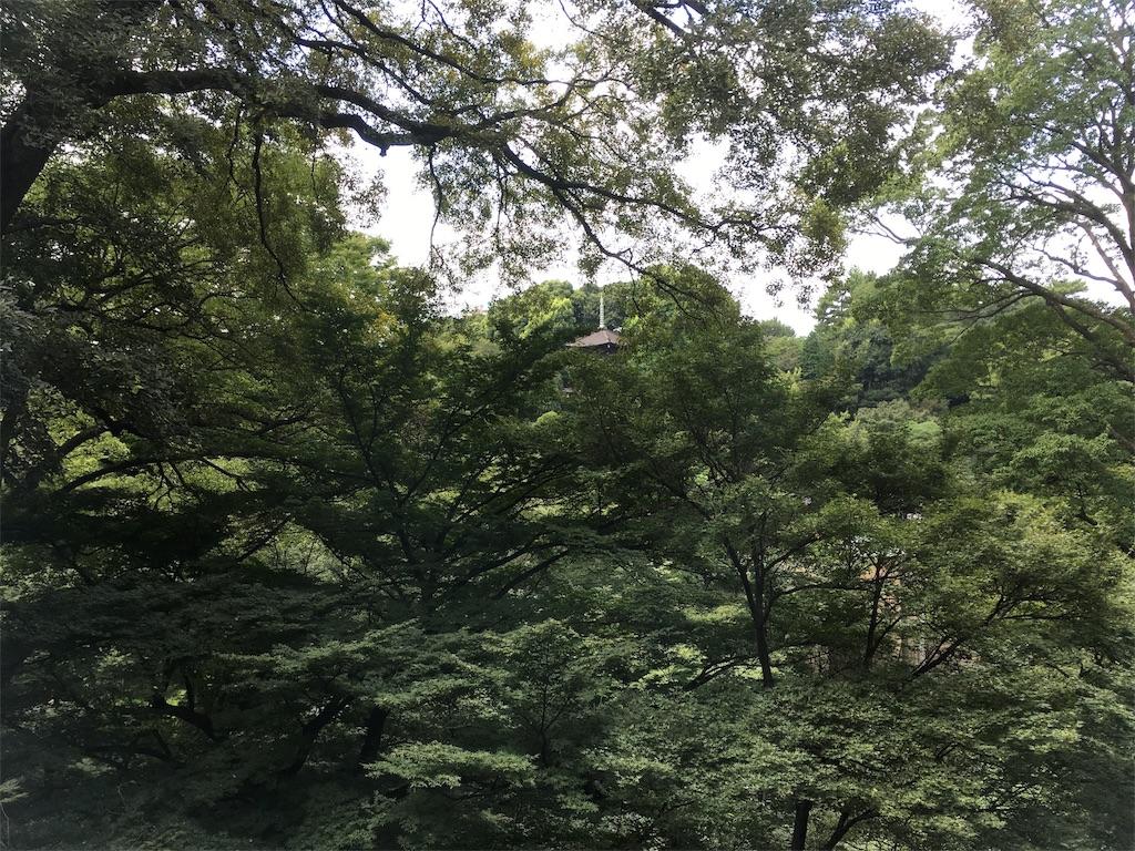 f:id:shimizunomukai:20170829023811j:image