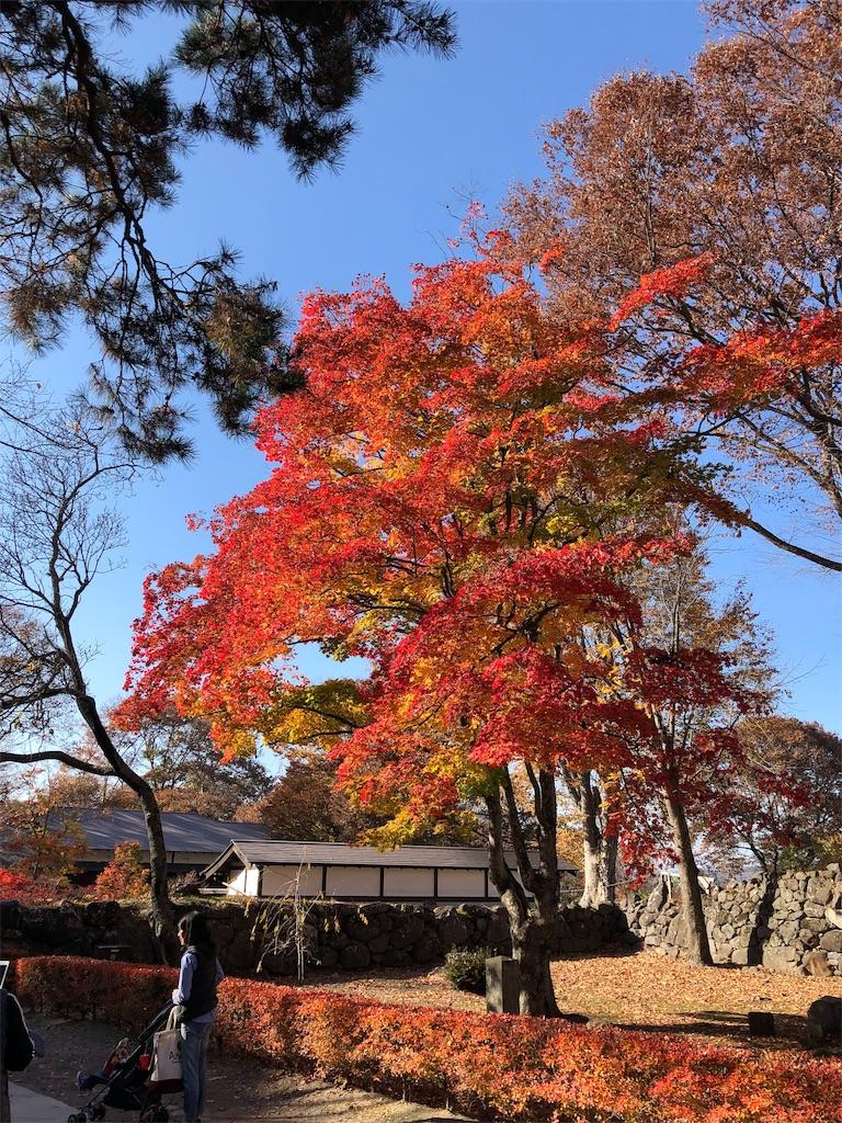 f:id:shimoemon:20181113001135j:image