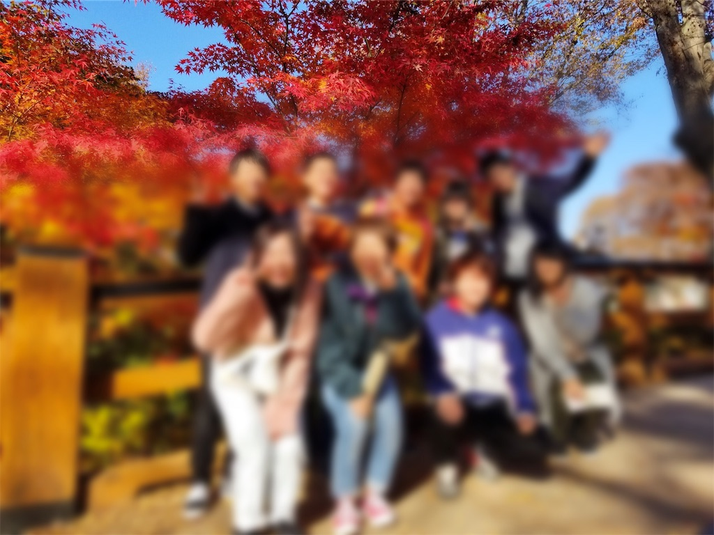f:id:shimoemon:20181113002203j:image