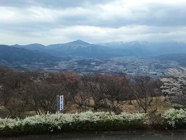 f:id:shimoten:20190417204202p:plain
