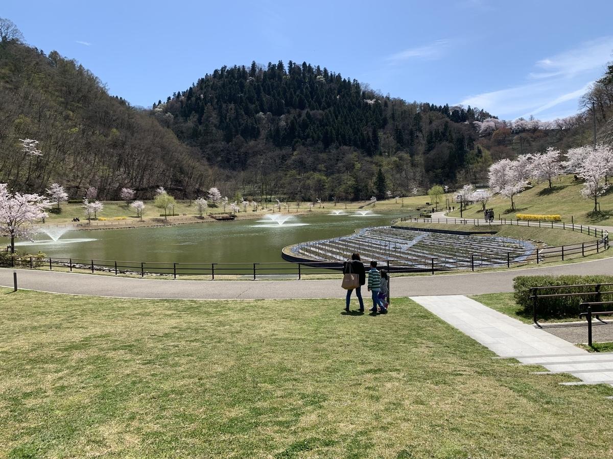 天童公園内の桜