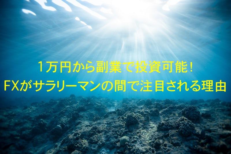 1万円から副業で投資可能!FXがサラリーマンの間で注目される理由