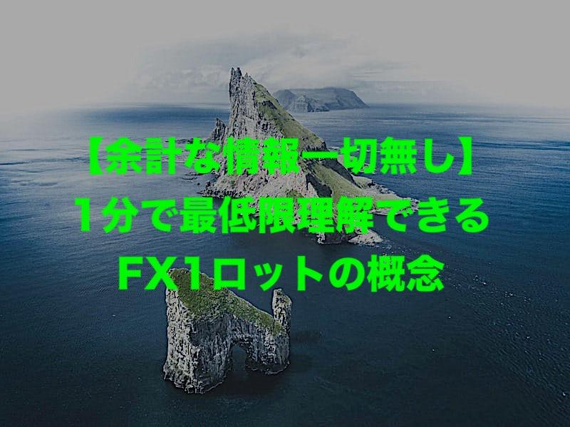 【余計な情報一切無し】1分で最低限理解できるFX1ロットの概念