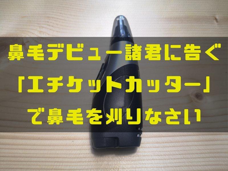 f:id:shimtarosmonoblog:20200517151048j:plain