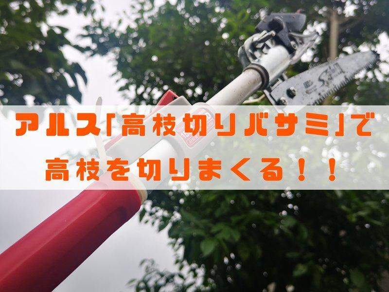 f:id:shimtarosmonoblog:20200614114651j:plain