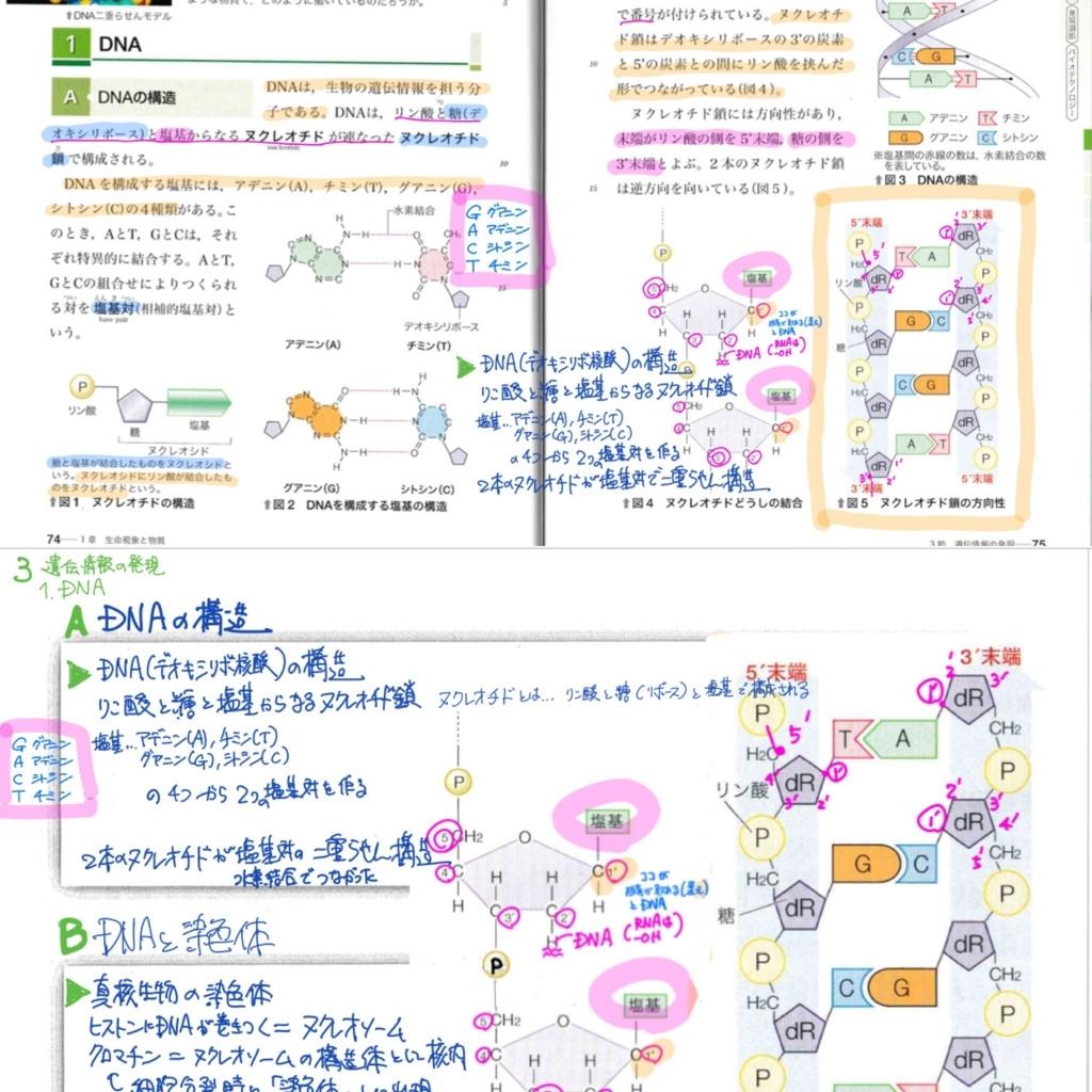 f:id:shimuran:20180615192207j:plain