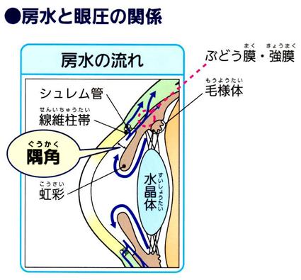 f:id:shin-ocha:20201023131758p:plain