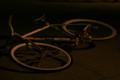 仄暗い自転車のサドルから…