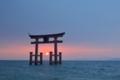 琵琶湖の夜明け  (白髭神社)